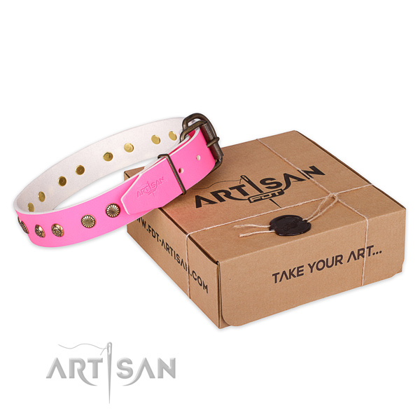 Reliable buckle on full grain genuine leather collar for your beautiful doggie