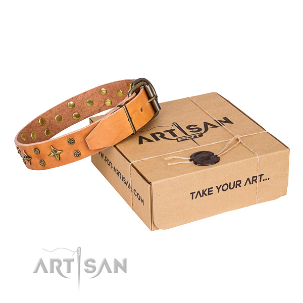 Stylish walking dog collar of fine quality genuine leather with embellishments