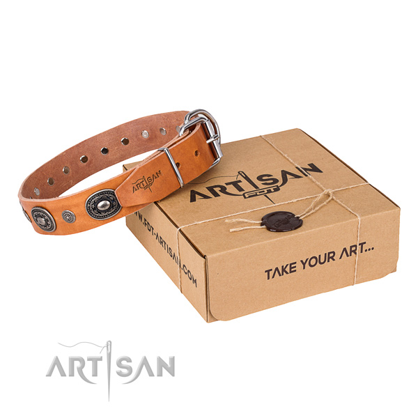 Strong leather dog collar made for daily walking