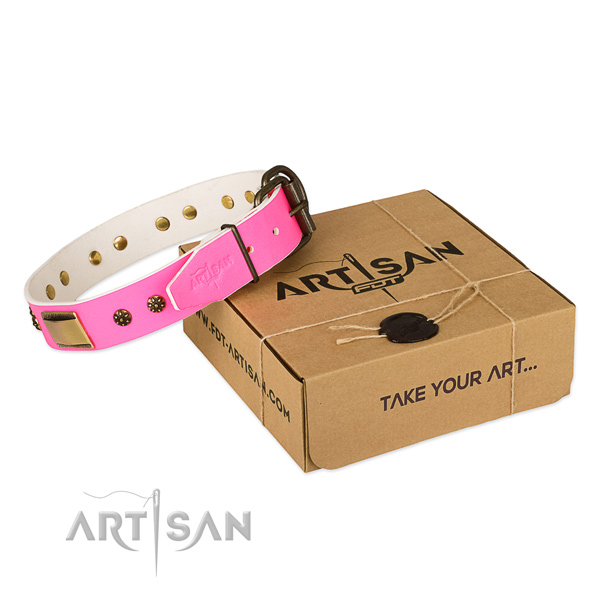 Fine quality full grain genuine leather collar for your attractive canine