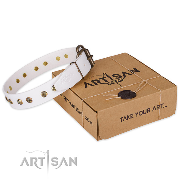 Rust resistant fittings on leather collar for your attractive canine