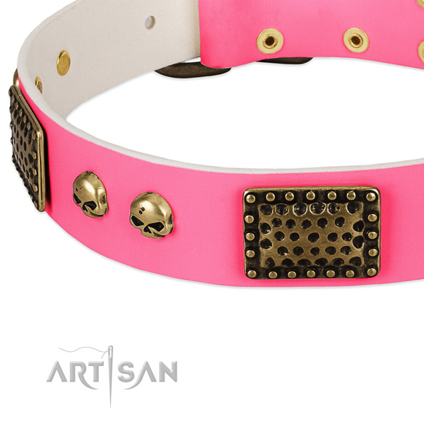 Reliable studs on natural leather dog collar for your dog