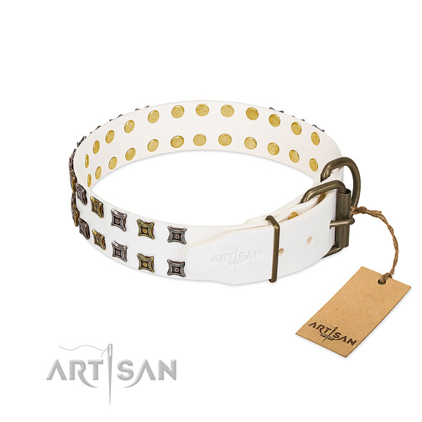 Leather collar with top notch embellishments for your four-legged friend