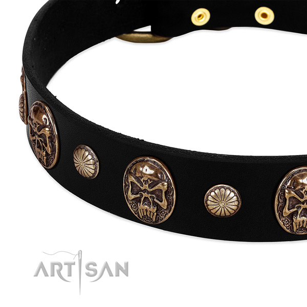 Full grain genuine leather dog collar with stylish adornments