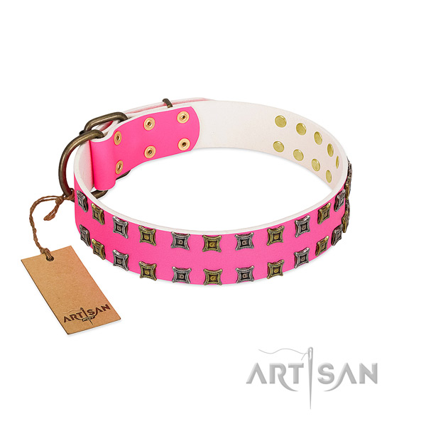 Full grain leather collar with stunning studs for your dog