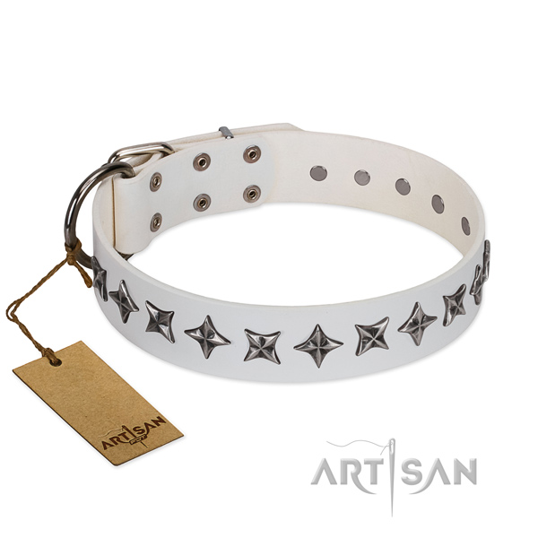 Daily use dog collar of strong full grain leather with studs