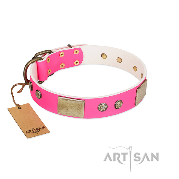 Easy wearing natural leather dog collar for walking your canine
