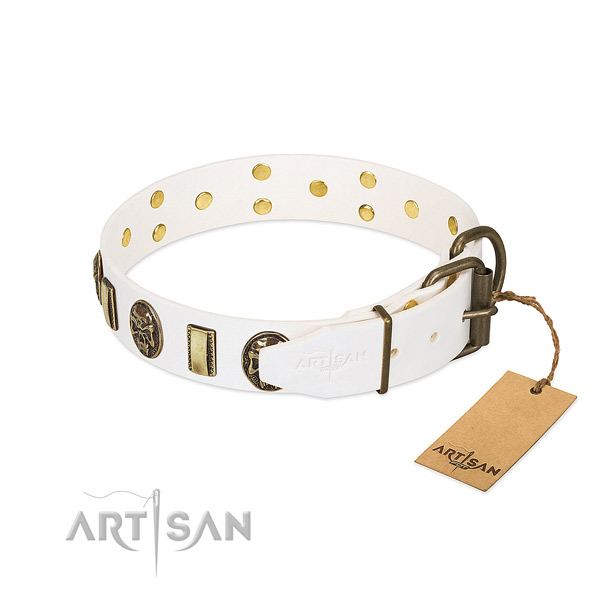 Durable hardware on full grain natural leather collar for everyday walking your pet