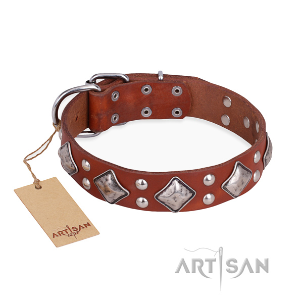 Daily walking remarkable dog collar with rust-proof traditional buckle