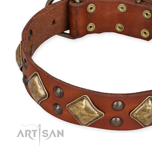 Full grain genuine leather collar with durable buckle for your attractive canine
