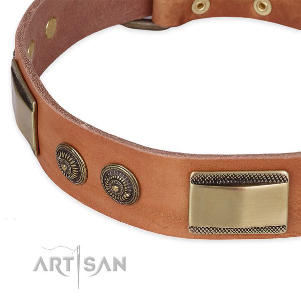 Embellished natural genuine leather collar for your handsome four-legged friend