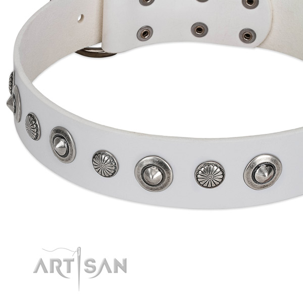 Leather collar with rust resistant D-ring for your stylish four-legged friend