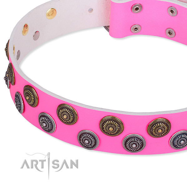 Everyday walking embellished dog collar of top quality full grain leather