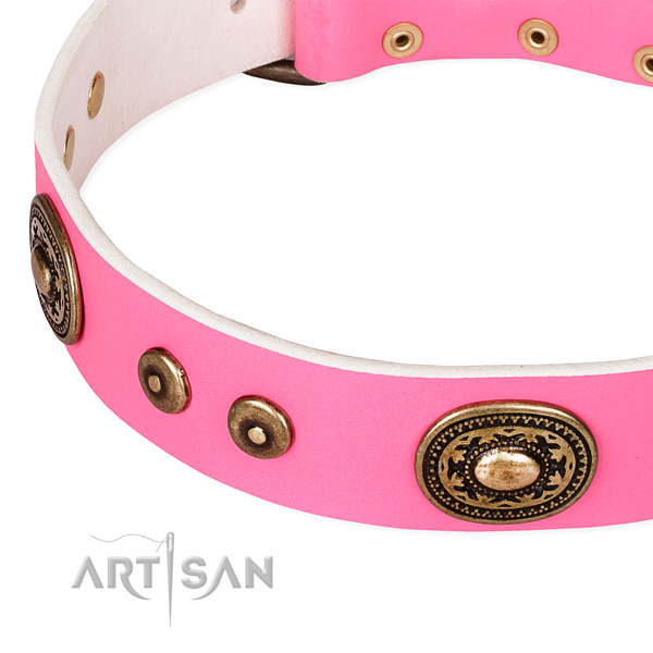 Embellished dog collar made of best quality full grain natural leather