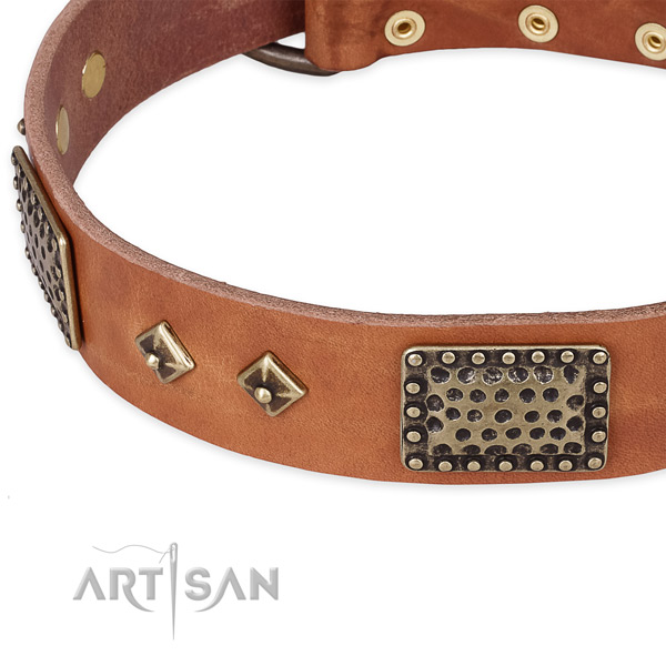Reliable traditional buckle on leather dog collar for your four-legged friend