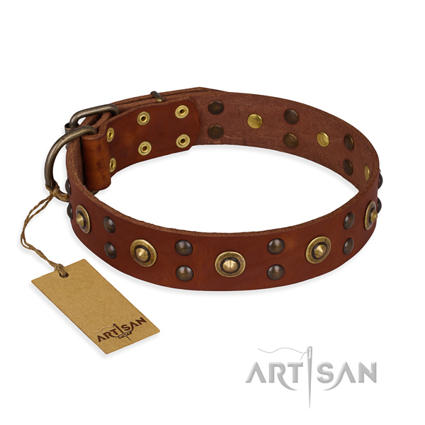 Adorned leather dog collar with durable traditional buckle