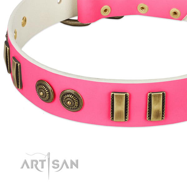 Strong buckle on leather dog collar for your pet
