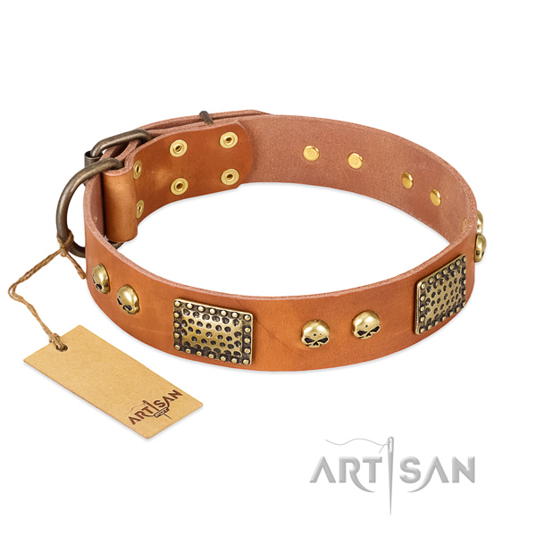 Easy to adjust natural leather dog collar for walking your four-legged friend