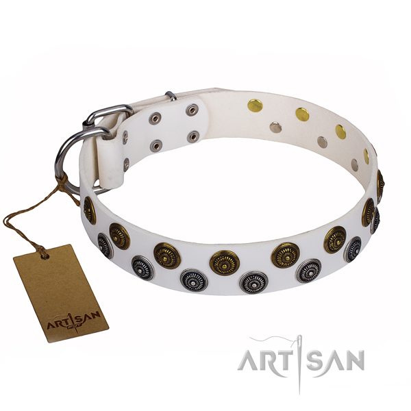 Basic training dog collar of durable full grain natural leather with embellishments