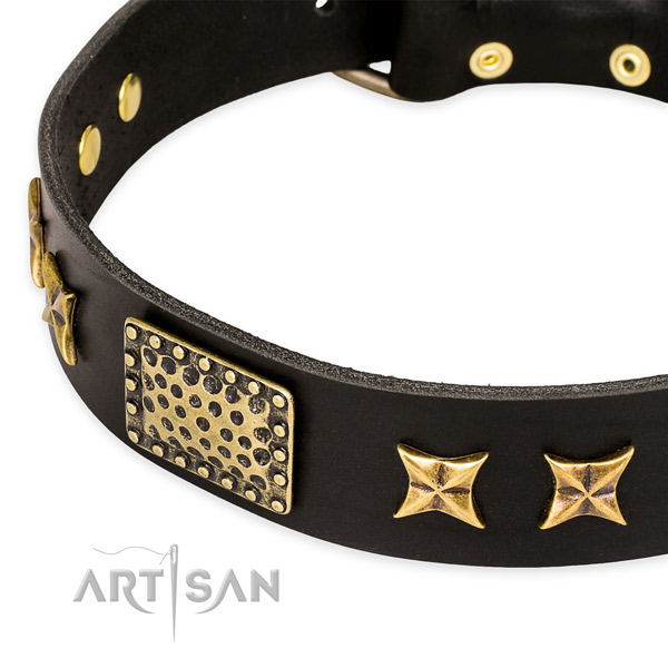 Full grain leather collar with rust-proof buckle for your lovely pet