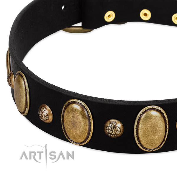 Natural leather dog collar with amazing decorations