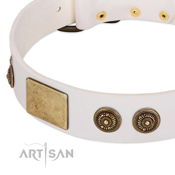 Awesome dog collar handcrafted for your impressive doggie