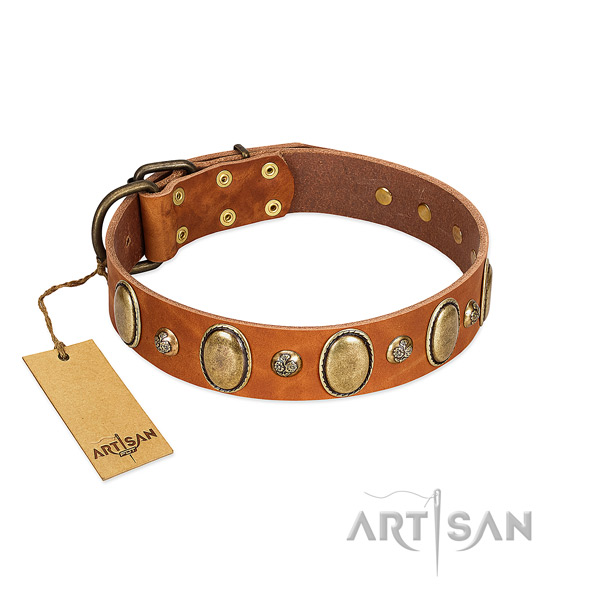 Natural leather dog collar of top notch material with impressive adornments