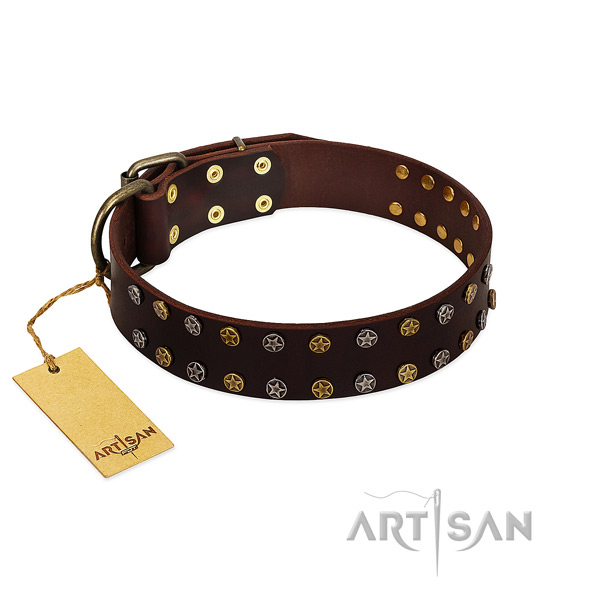 Comfortable wearing quality leather dog collar with studs