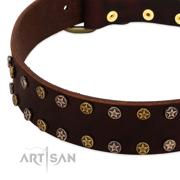Daily walking full grain natural leather dog collar with inimitable decorations