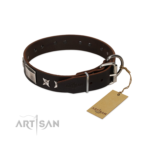 Unusual collar of full grain natural leather for your stylish four-legged friend