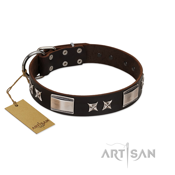 Comfortable dog collar of full grain leather