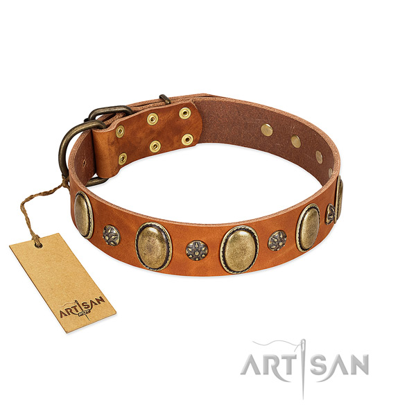 Walking reliable genuine leather dog collar with embellishments