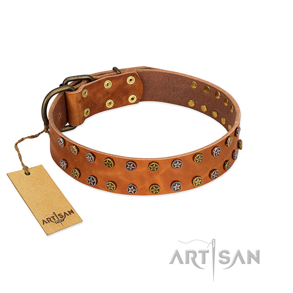 Easy wearing reliable natural leather dog collar with embellishments