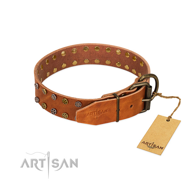 Fancy walking natural leather dog collar with awesome decorations