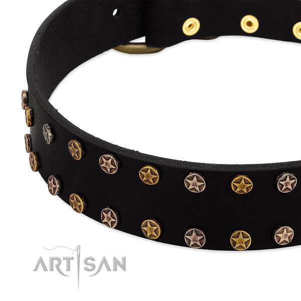 Exquisite embellishments on leather collar for your pet