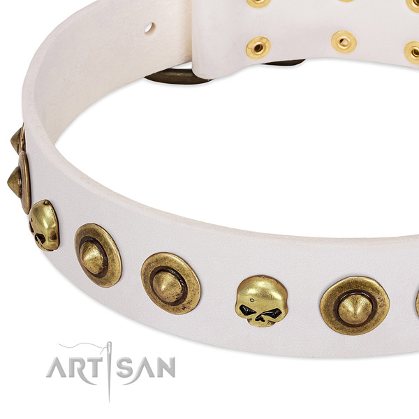 Fashionable decorations on natural leather collar for your canine