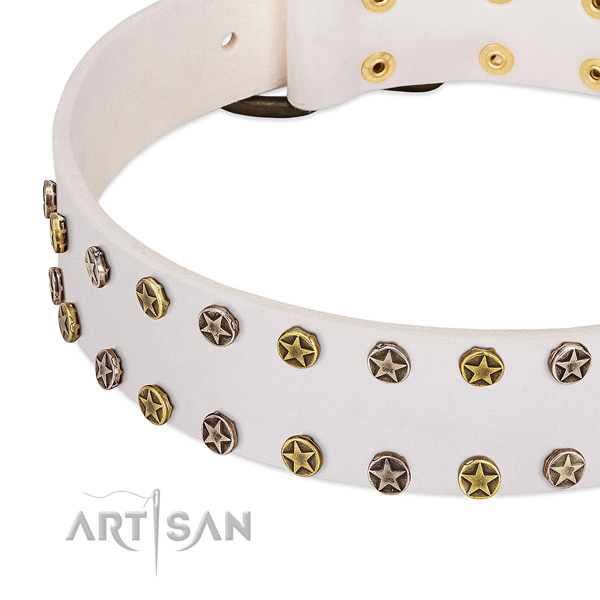 Trendy embellishments on full grain genuine leather collar for your pet