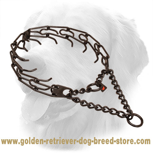 Prong collar of strong black stainless steel for ill behaved pets