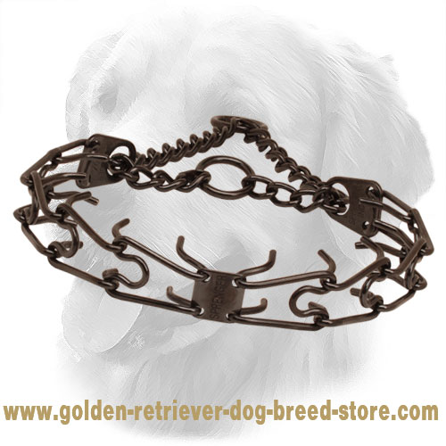 Prong collar of rust resistant black stainless steel for ill behaved pets