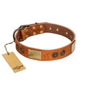 """Bronze Century"" FDT Artisan Tan Leather Golden Retriever Collar with Plates and Brooches with Cool Ornament"