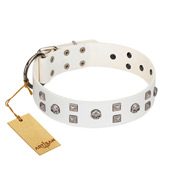 """Rock the Sky"" Durable FDT Artisan White Leather Golden Retriever Collar with Chrome-plated Decorations"