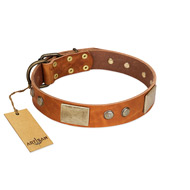 """Ancient Treasures"" FDT Artisan Tan Leather Golden Retriever Collar with Antiqued Plates and Studs"