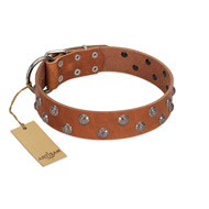 """Waltz of the Flowers"" Handmade FDT Artisan Tan Leather Golden Retriever Collar with Chrome-plated Engraved Studs"