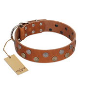 """Ancient Symbol"" Trendy FDT Artisan Tan Leather Golden Retriever Collar with Silver- and Gold-Like Studs"