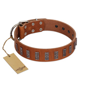 """Silver Century"" Fashionable FDT Artisan Tan Leather Golden Retriever Collar with Silver-Like Plates"