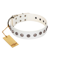 """Solar Energy"" FDT Artisan White Leather Golden Retriever Collar with Silver-like Studs and Medallions"