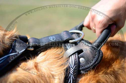 Comfortable Handle on Leather Dog Harness