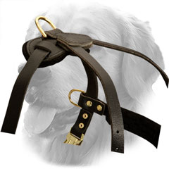 Golden Retriever Harness for Pulling