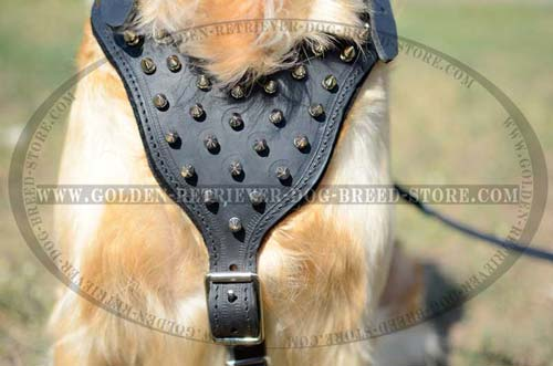 Leather Harness for Stylish Dogs