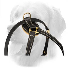 Decorated Harness for Small Dogs